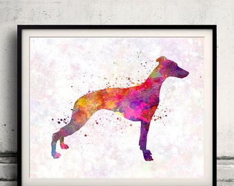 Whippet 01 in watercolor - Fine Art Print Poster Decor Home Watercolor Illustration Dog - SKU 1632