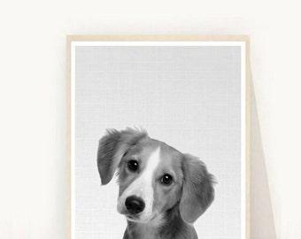 Dog Print, Nursery Animals Print,  Printable Art, Cute Animals,  Black And White Dog, Wall Decor, Wall Art, digital Download
