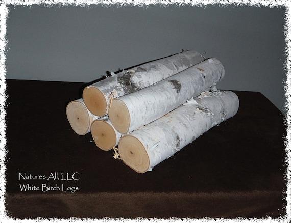Decorative White Birch Fireplace Logs 5 Piece By Naturesallllc