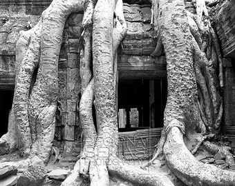 Siem Reap, Cambodia, Travel Photography, Temple, Fine Art, Photojournalism, black and white, Home Decor, Architecture, Door, Banyan, Trees