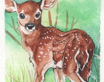 Baby Deer | 4x6 Original Watercolor