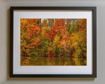 Autumn Central Park, Central Park Art, Autumn Leaves, Foliage, Nature Photography, Fall Decor, New York Print, Wall Art, Autumn Reflections