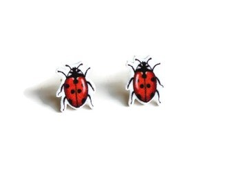 Ladybird Earrings, Ladybug Stud Earrings, Insect Beetle Jewellery, Bug Studs