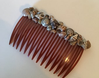 Shell Hair Comb in Brown