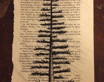 Original Vintage Book Page Drawing - Tree