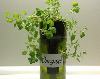 Recycled Wine Bottle Self Watering Herb Planter - Oregano