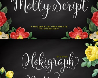 Molly Script Font, Modern Script Font, Handwritten Font, Calligraphy Font, Fancy Font, Modern Calligraphy Font, Digital Font Download