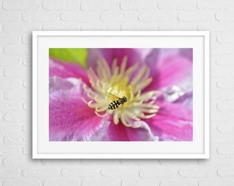 Pink Flower with Bee Art Photo Print