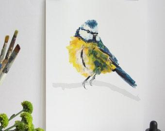 Garden Bird Print - Blue Tit