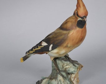 Guiseppe Tagliariol Tay Italy  - Bohemian Waxwing bird