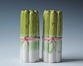 Asparagus shaped ceramic salt and pepper shakers / decorative table top shakers