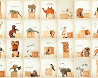 ABC art, toy photo,  nursery art, nursery decor, childs room decor, child room art, letter art, alphabet photo, alphabet art, animal ABCs