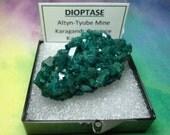 Large DIOPTASE 29.3 Gram NO Matrix Natural Bright Teal Blue Green Crystal Mineral Specimen In Perky Box From Kazakhstan