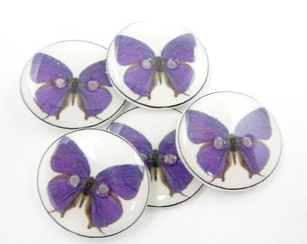 "5 Handmade Buttons. Purple Butterfly Decorative Novelty Buttons.  3/4"" or 20 mm Sewing or Craft  Buttons."