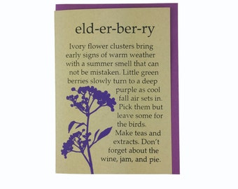 Elderberry Blank Card Recycled Paper Compostable Plastic Environmentally Friendly