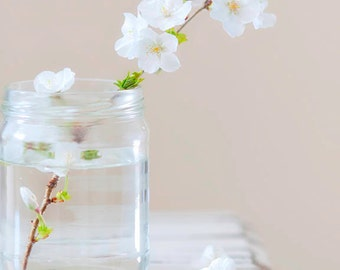Cherry Blossom Photography, Cherry Blossom, Photography Print, White Flower, Flower Photography, Flower Photo, White Flower Photo