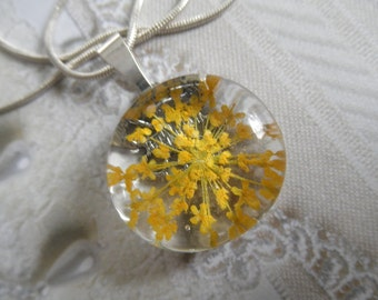 Yellow Queen Anne's Lace Round Glass Pressed Flower Pendant-Burst of Sunshine-Symbolizes Peace-Nature's Wearable Art-Gifts For 25
