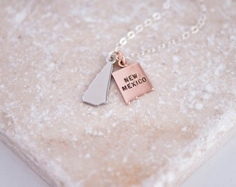 Multiple States Necklace, Friendship Jewelry, 2 States on 1 Chain Friendship Necklace in Rose, Gold or Silver, Moving Away Necklace