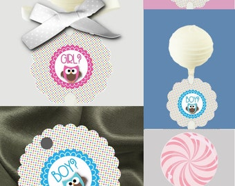 12 Cake Pop Tags, Sucker or Lollipop Tags, Baby Gender Reveal Party, Baby Shower, Pink & Blue Baby Owls