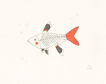 Fish art - x-ray fish - original illustration on paper - limited edition