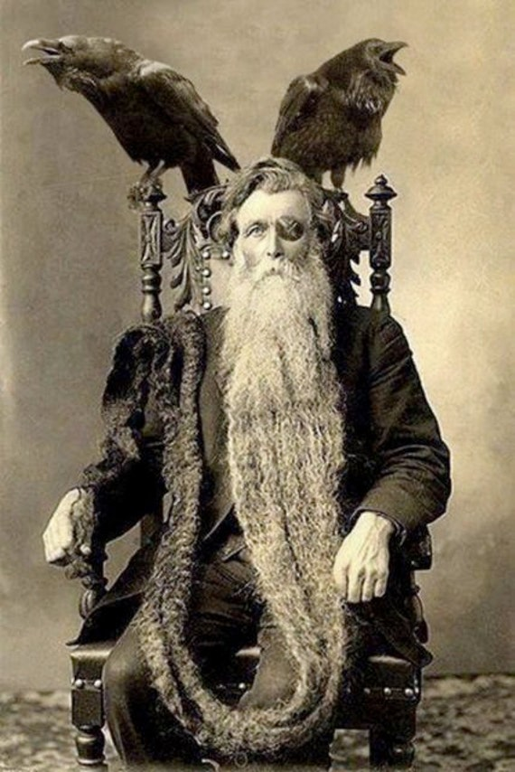 Bearded odin man long longest beard unusual by eclecticforest for Odd victorian names