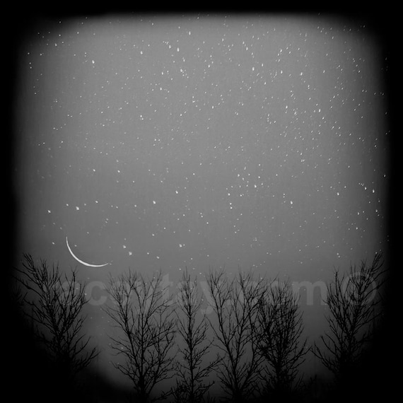 Black and White Nature Photography, Winter Art, Tree Branches, Crescent Moon, Stars, Night Sky