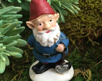 Mini Garden Gnome With Red Hat, Blue Coat Figurine, Home and Garden Decor, Fairy Garden, Gnome Garden Accessory