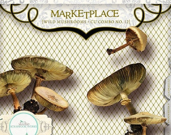 Wild Mushrooms | CU Combo No. 12 by Papier Creatif Earthy cool mushroom digital elements