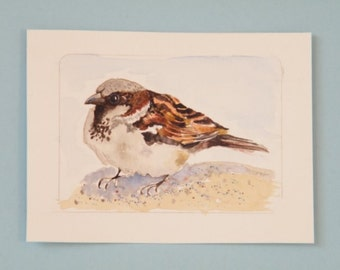 House sparrow,  original watercolor,  mini bird art,  aceo bird painting,  little brown bird,  tiny wall art