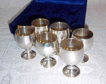 Silver Toasting Goblets in Royal Blue Lined Storage Case