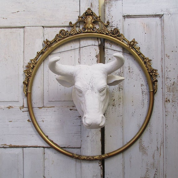 Large Albino Bull Head Wall Mount Faux By Anitasperodesign