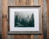 Foggy Treeline Print . Pine Trees . Adventure . Nature