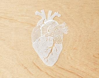Anatomical Heart Laser-Cut Papercutting Artwork
