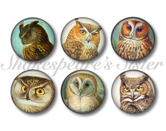 Owl Magnets - Fridge Magnets - Owl Kitchen - 6 Magnets - 1.5 Inch Magnets - Kitchen Magnets
