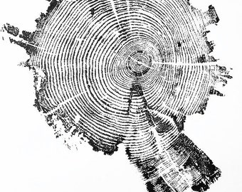 Yellowstone Park, Tree Ring Print, National Park Art, Tree ring pattern, Art from nature, natural patterns, tree ring art print, Yellowstone