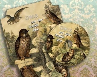 OWLs - Printable CD/DVD Label & Cover Download Digital Collage Sheet  - Print and Cut