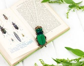 Laser Cut Green Mirror Wood Stag Beetle | Insect Necklace | Engraved Jewellery
