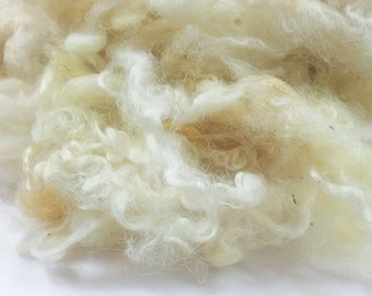 Wensleydale Longwool Fleece - Scoured Fibre - British Wool for felting and spinning