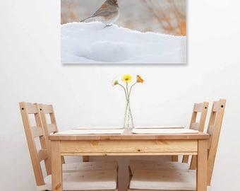 Dark-eyed Junco on Snow Fine Art Print, Brown Bird, Nature Wildlife Photography, Wallart Photo Printable, Home Office Decor, Bird Lover Gift