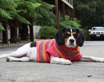Rainbow Crotchet Dog Sweater