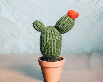 Flowering Knitted Cactus - Flowering Cactus, Knit Cactus, Crochet Cactus, Amigurumi, cactus toy, plush cactus, stuffed cactus, cactus art