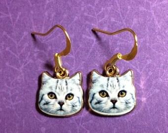 Kitty cat earrings. Tiny CAT earrings. Gray cat earrings. Kitty earrings. Cat lover gifts. Animal earrings. Cat jewelry. Cat charms