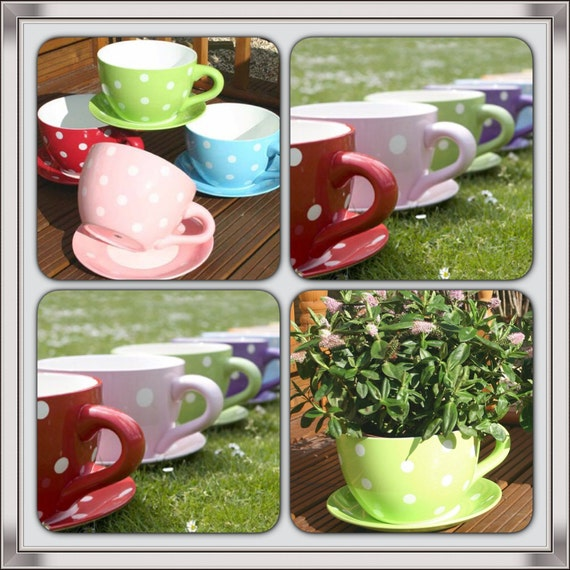 Giant Floral Polka Dots Design Tea Cup And Saucer Planter