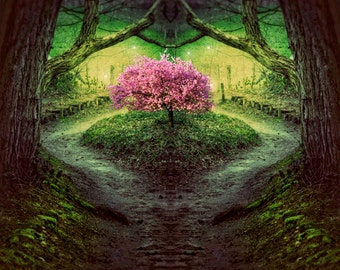 Magic Tree Art, Surreal Photo Print, Forest, Enchanted, Green and Pink, Magical, Fine Art Photography, Fairytale Wall Decor, Cherry Blossom