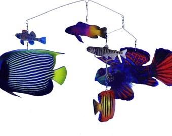 6 Fish Mobile