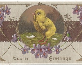 Antique Easter Postcard - Easter Chick - Easter Greetings