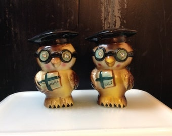 Wise old owl salt and pepper shakers