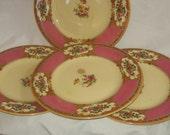 Royal Venton Ware - John Steventon & Sons LTD Dinner Plates/English Stoneware/Vintage Dinnerware-Burslem England Dinner Plates