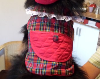 Designed Dog Coat for the Cool Evening walk