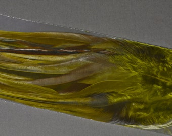 Olive Green Brown Feathers, Fly Tying Supply, Craft Feathers